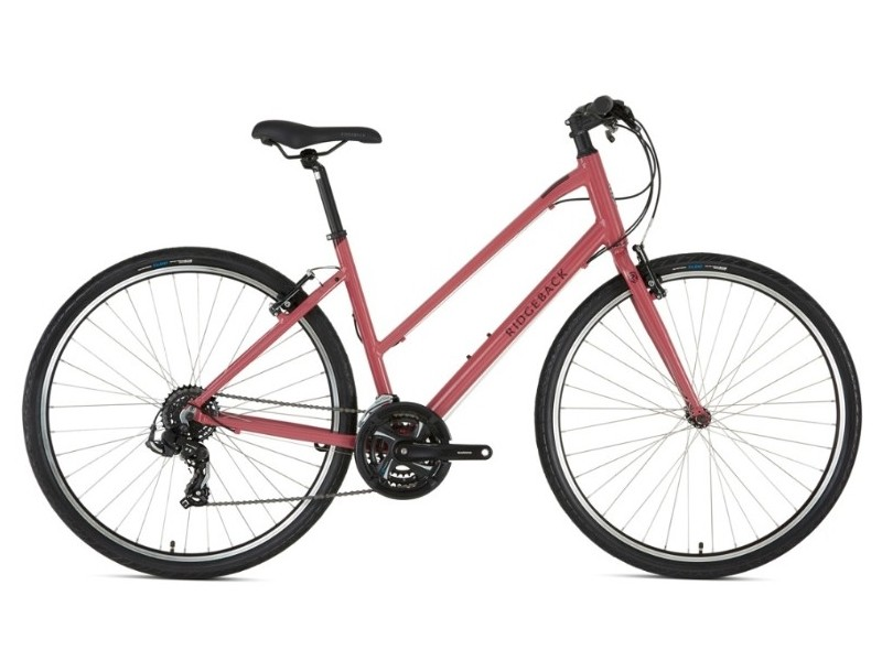 Ridgeback Motion Open Frame 2020